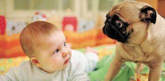 Bebés serão adultos com a imunidade mais forte
