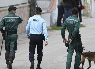Loja chinesa escondia 24 pessoas e dois cães com maus tratos