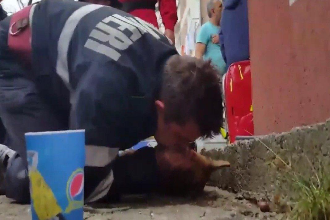 Bombeiro faz respiração boca a boca para salvar cão