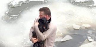 cão preso em águas congeladas