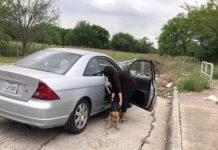 mulher abre a porta do carro e abandona 4 animais