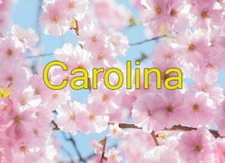 Tens uma Carolina na tua vida