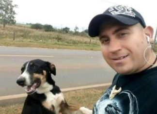Homem faz memorial ao seu falecido cão